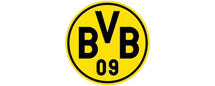 Unsere Referenzen – BVB